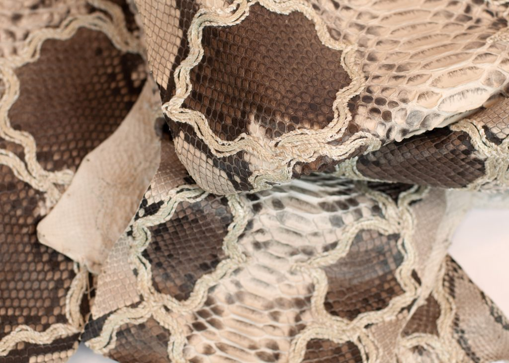 Caffellatte embroidered python leather with neutral base by GLENI