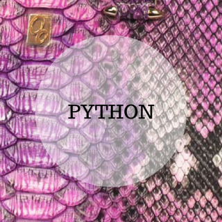 Genuine python leather handbags
