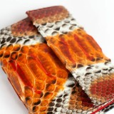 Wallet in genuine orange python leather