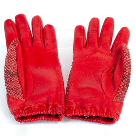 Red gloves in python and tassel