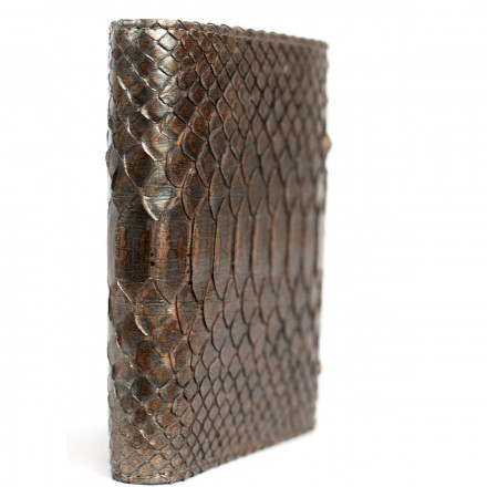 Vertical men's wallet in genuine GLENI lead python leather