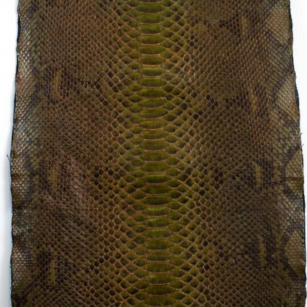 Olive green python leather